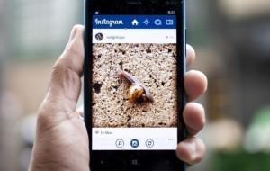 10 mejores cuentas de Instagram en español.